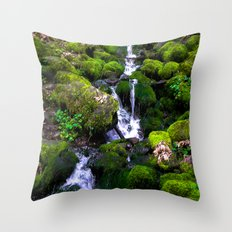 Trickle Down Throw Pillow