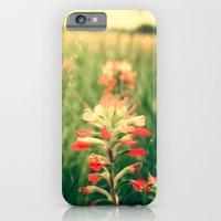 Wild flowers! iPhone 6 Slim Case