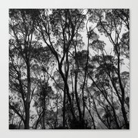 Forest Silhouette Canvas Print