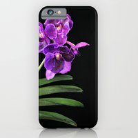 Orchids mean Love; I love Orchids iPhone 6 Slim Case