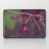 Vintage Nature iPad Case