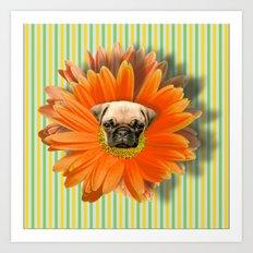 Pistil Pug Art Print