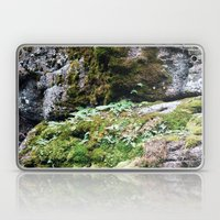 Moss Laptop & iPad Skin