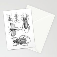 Vintage Beetle Stationery Cards