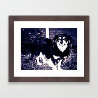 STREET DOGS Framed Art Print