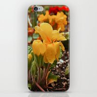 As Winter ends iPhone & iPod Skin