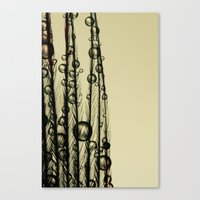 Charcoal Feather Drops Canvas Print