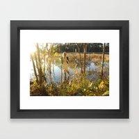 girl in swamp Framed Art Print