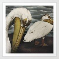 Tom Feiler Pelican Art Print