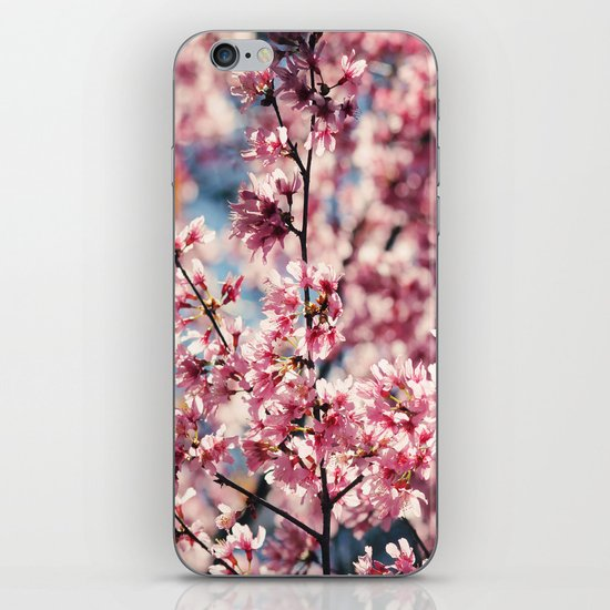 Painting the Town Pink iPhone & iPod Skin