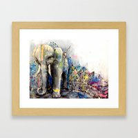 Maximus  Framed Art Print