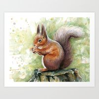 Squirrel Watercolor Painting  Art Print