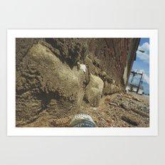 Ants View  Art Print