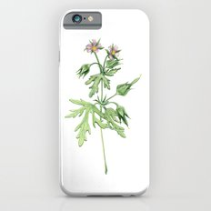 Flowers For Dad iPhone 6 Slim Case
