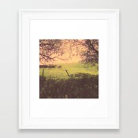 Hypnotic Fields  Framed Art Print