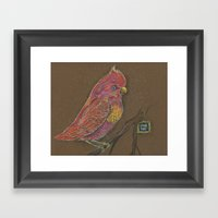 Vivid Bird Framed Art Print