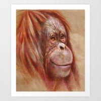 Orang-outan smile Art Print