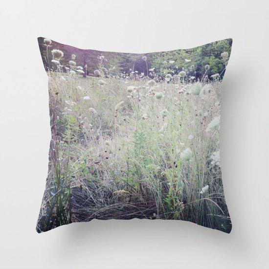 St. James Park Throw Pillow