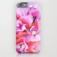 Bougainvillea iPhone 6 Slim Case