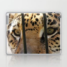 Hungry Eyes Laptop & iPad Skin