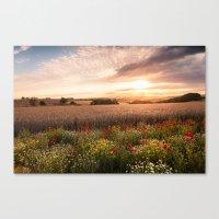 Summer Fields And Flower… Canvas Print