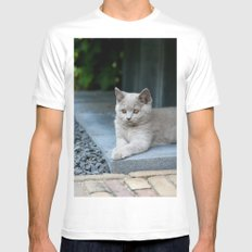 Bikkel the cat ! White Mens Fitted Tee SMALL
