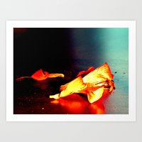 Lily II Art Print