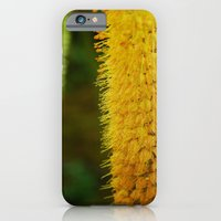 Blossoming iPhone 6 Slim Case