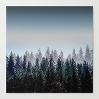 Woods 2 Canvas Print