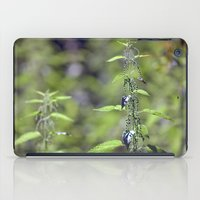 Stinging Nettle 5288 iPad Case