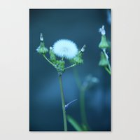 One More Wish (Blue) Canvas Print