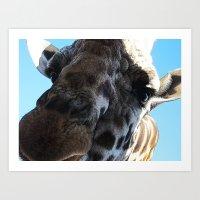 Hello Camel Art Print