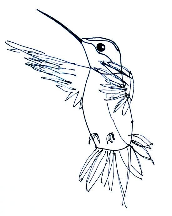Hummingbird B Art Print