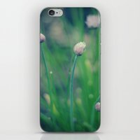 The Joy Of Spring iPhone & iPod Skin