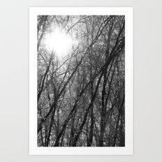 Michigan Winter - Whiteout 2 Art Print