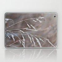 Grass Seed Heads Laptop & iPad Skin