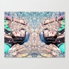 Reflects Canvas Print