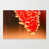 unnamed Canvas Print