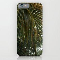 palm leaves iPhone 6 Slim Case