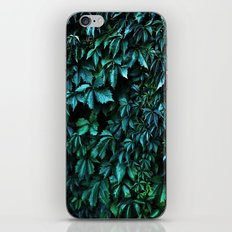 Green garden iPhone & iPod Skin