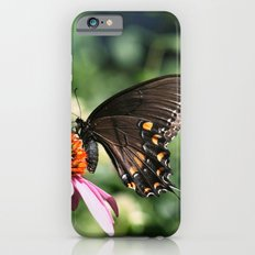 Eastern Tiger Swallowtail - Black Morph iPhone 6 Slim Case