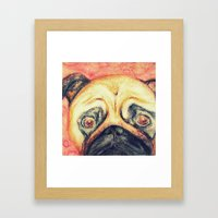 Grunt The Pug Framed Art Print