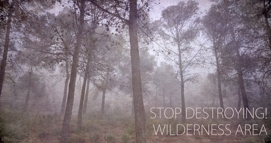 STOP DESTROYING FOREST! WILDERNESS AREA Art Print