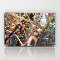 Dragon Fight    [PLANTS]   [VINES] Laptop & iPad Skin