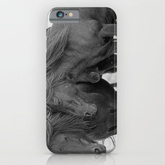 PONIES IN THE WIND iPhone & iPod Case