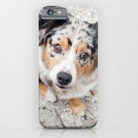 Australian Shepherd iPhone 6 Slim Case