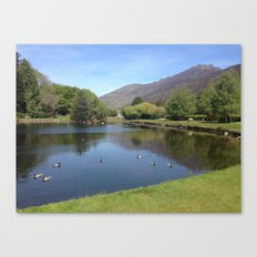 Duckpond Canvas Print