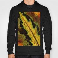 Leaf Veins III Hoody