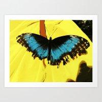 Butterfly Test Art Print