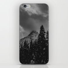 North Cascade Winter Blizzard iPhone & iPod Skin
